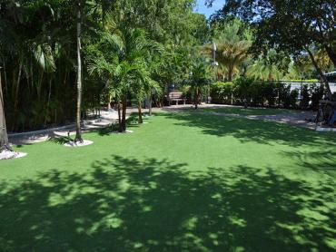 Artificial Grass Photos: Artificial Grass Carpet Seaside, Oregon Landscaping Business, Commercial Landscape