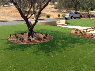 Artificial Grass Photos: Artificial Lawn Jennings Lodge, Oregon Landscaping Business, Front Yard Landscape Ideas