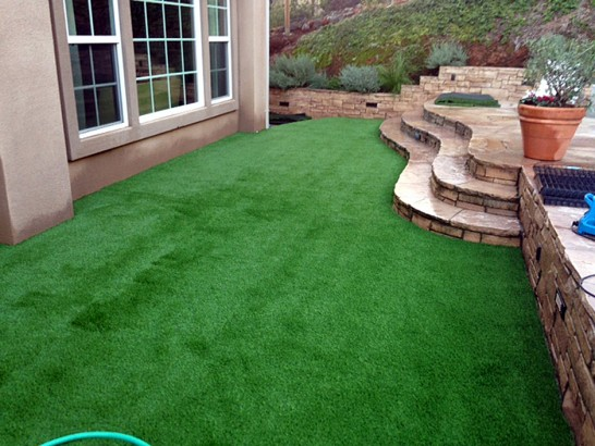 Artificial Grass Photos: Artificial Lawn Neskowin, Oregon Gardeners, Backyard Design