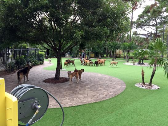 Artificial Grass Photos: Artificial Lawn Odell, Oregon Artificial Grass For Dogs, Commercial Landscape