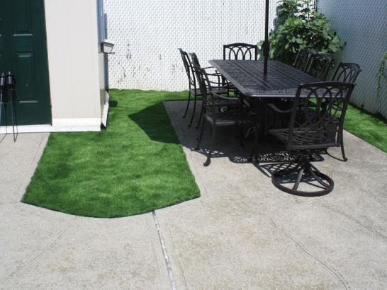 Artificial Grass Photos: Artificial Turf Alsea, Oregon Home And Garden, Backyard Landscape Ideas