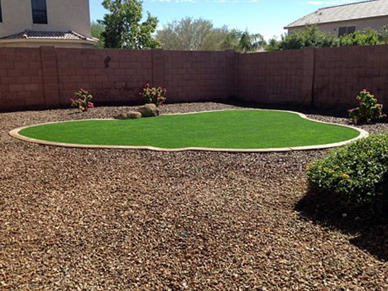 Artificial Grass Photos: Artificial Turf Cascade Locks, Oregon Rooftop, Backyard Design