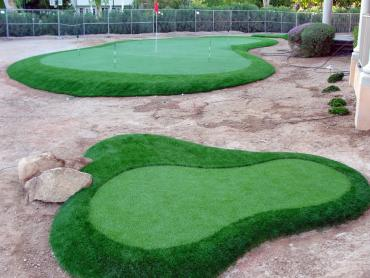 Artificial Grass Photos: Artificial Turf Cayuse, Oregon How To Build A Putting Green, Front Yard Ideas