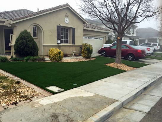 Artificial Grass Photos: Artificial Turf Cost Bellfountain, Oregon Lawn And Landscape, Front Yard