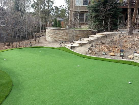 Artificial Grass Photos: Artificial Turf Cost Tillamook, Oregon Garden Ideas, Backyard Design
