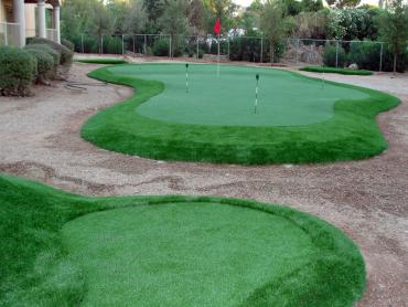 Artificial Grass Photos: Artificial Turf Fairview, Oregon Home Putting Green, Small Backyard Ideas