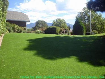 Artificial Grass Photos: Artificial Turf Garden Home-Whitford, Oregon Indoor Dog Park, Backyard Garden Ideas