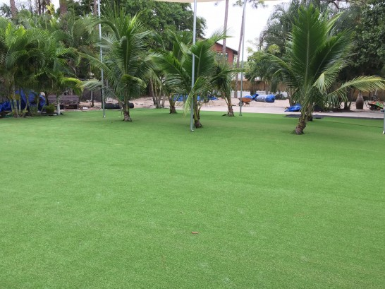 Artificial Grass Photos: Artificial Turf Installation Ione, Oregon Design Ideas, Commercial Landscape