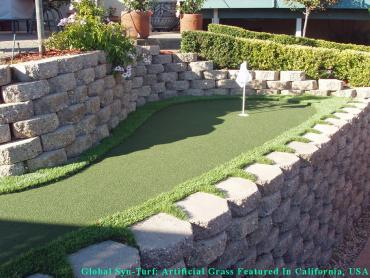 Artificial Grass Photos: Artificial Turf Installation Milwaukie, Oregon Home And Garden, Beautiful Backyards