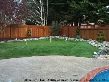 Artificial Grass Photos: Artificial Turf Lake Oswego, Oregon Garden Ideas, Backyard Designs