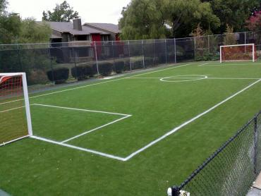 Artificial Grass Photos: Artificial Turf Pine Hollow, Oregon Eco Friendly Products, Commercial Landscape
