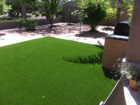 Artificial Turf Rufus, Oregon Dog Running, Backyards artificial grass
