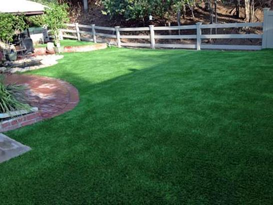 Artificial Grass Photos: Best Artificial Grass Clackamas, Oregon Pictures Of Dogs, Backyard Landscaping