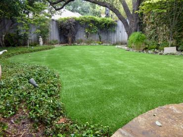 Artificial Grass Photos: Best Artificial Grass Condon, Oregon Lawn And Garden, Backyard Design
