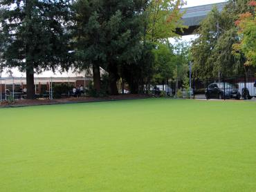 Artificial Grass Photos: Best Artificial Grass Idaville, Oregon Roof Top, Commercial Landscape