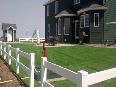 Artificial Grass Photos: Best Artificial Grass Mulino, Oregon, Front Yard Landscaping
