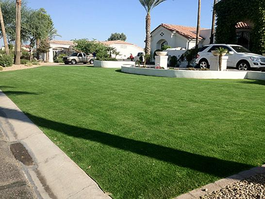 Artificial Grass Photos: Fake Grass Carpet Dayton, Oregon City Landscape, Landscaping Ideas For Front Yard