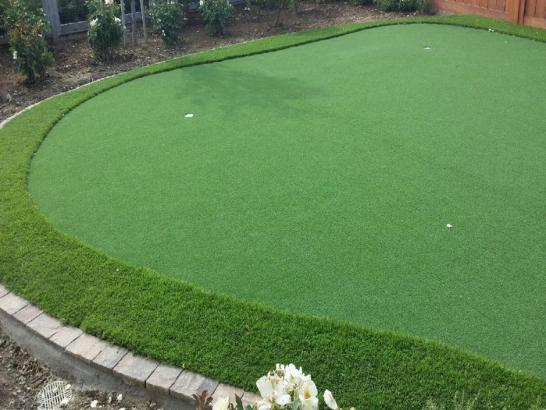 Artificial Grass Photos: Fake Grass Carpet Fort Hill Census Designated Place, Oregon Lawns, Backyard Makeover