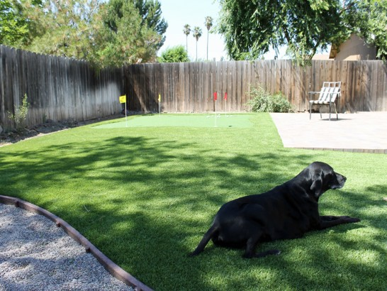 Artificial Grass Photos: Fake Grass Carpet Halsey, Oregon Rooftop, Backyard Garden Ideas