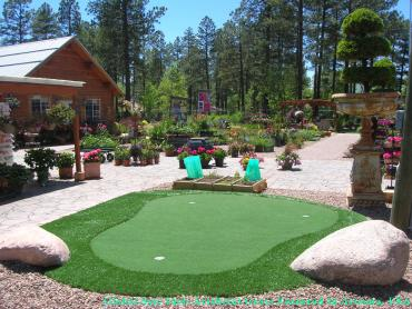 Fake Grass Carpet West Haven-Sylvan, Oregon Indoor Putting Green, Backyards artificial grass
