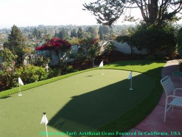 Artificial Grass Photos: Fake Lawn Cedar Mill, Oregon Landscaping Business, Backyard