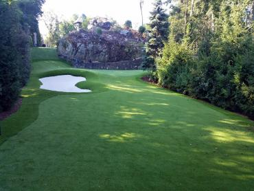 Artificial Grass Photos: Fake Turf Hebo, Oregon Roof Top, Commercial Landscape