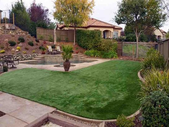 Artificial Grass Photos: Fake Turf Stayton, Oregon Roof Top, Backyard Ideas