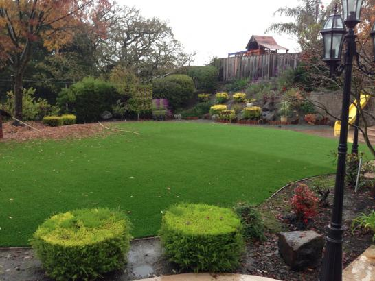 Artificial Grass Photos: Faux Grass Bend, Oregon Rooftop, Backyard Designs