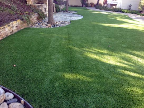 Artificial Grass Photos: Faux Grass Oakridge, Oregon Design Ideas, Backyard Landscape Ideas