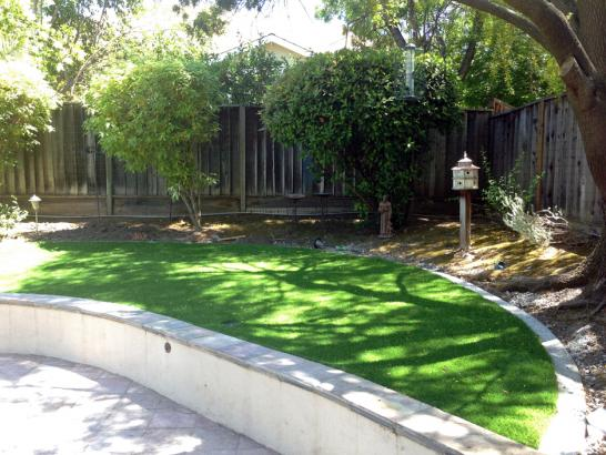 Artificial Grass Photos: Grass Carpet Antelope, Oregon Design Ideas, Commercial Landscape