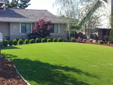 Artificial Grass Photos: Grass Installation Summit, Oregon Lawns, Small Front Yard Landscaping