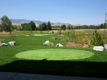 Artificial Grass Photos: Grass Turf Woodburn, Oregon Putting Green Flags, Backyard Landscaping Ideas