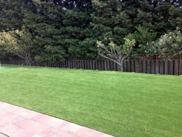 Artificial Grass Photos: Green Lawn Chenoweth, Oregon Roof Top, Backyard Ideas
