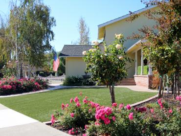 Artificial Grass Photos: Installing Artificial Grass Crabtree, Oregon Backyard Playground, Small Front Yard Landscaping