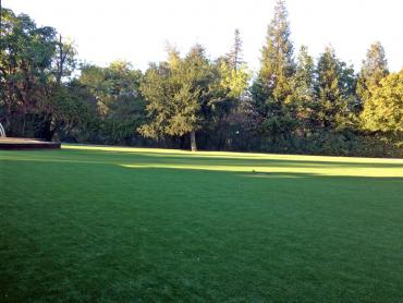 Artificial Grass Photos: Installing Artificial Grass Philomath, Oregon Home And Garden, Parks