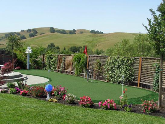 Artificial Grass Photos: Lawn Services Canby, Oregon Backyard Putting Green, Backyard Landscaping Ideas