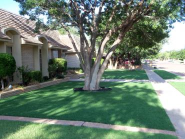 Artificial Grass Photos: Lawn Services Cottage Grove, Oregon Paver Patio, Landscaping Ideas For Front Yard