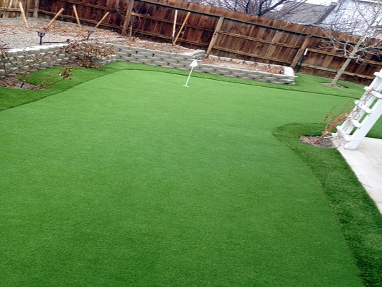 Artificial Grass Photos: Lawn Services Pacific City, Oregon Design Ideas, Backyard Landscape Ideas