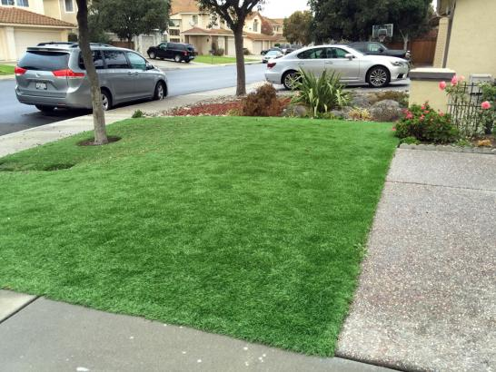 Artificial Grass Photos: Outdoor Carpet Saint Paul, Oregon Lawns, Front Yard Design