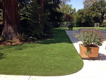 Artificial Grass Photos: Outdoor Carpet Toledo, Oregon Home And Garden, Front Yard Ideas