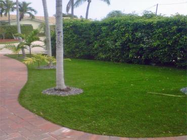 Artificial Grass Photos: Outdoor Carpet Tumalo, Oregon Lawn And Landscape, Front Yard Design
