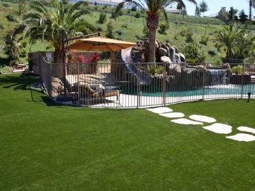 Artificial Grass Photos: Plastic Grass Dallas, Oregon Roof Top, Backyard Pool