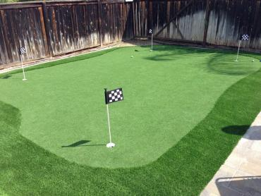 Artificial Grass Photos: Plastic Grass Deer Island, Oregon Lawn And Garden, Backyard Garden Ideas