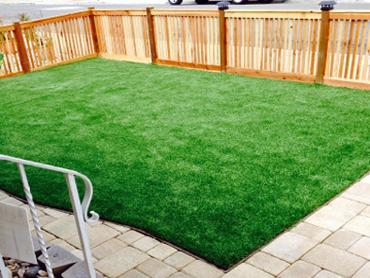 Artificial Grass Photos: Plastic Grass Forest Grove, Oregon Design Ideas, Backyard