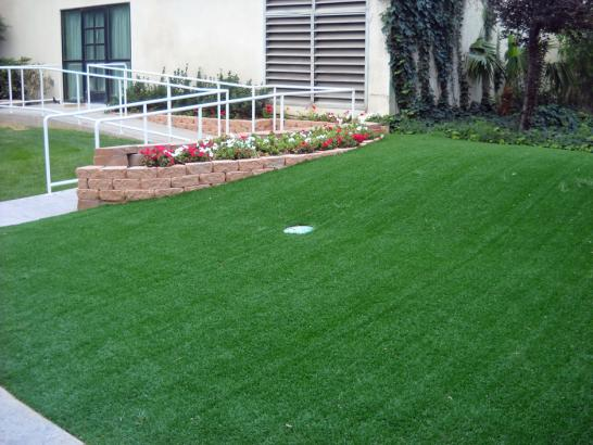 Artificial Grass Photos: Plastic Grass Oak Hills, Oregon Backyard Putting Green, Front Yard Design
