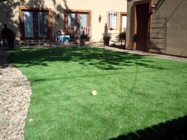 Synthetic Grass Cost Days Creek, Oregon Gardeners, Backyard Ideas artificial grass