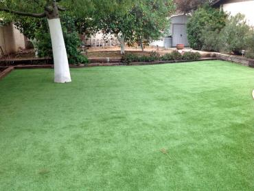 Artificial Grass Photos: Synthetic Grass Cost Government Camp, Oregon City Landscape, Beautiful Backyards