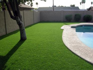Artificial Grass Photos: Synthetic Grass Cost Labish Village, Oregon Home And Garden, Backyard Ideas