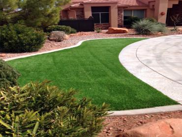 Artificial Grass Photos: Synthetic Grass Cost Lowell, Oregon Design Ideas, Front Yard Landscape Ideas