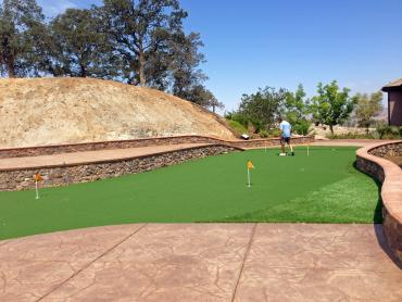 Artificial Grass Photos: Synthetic Grass Cost Sherwood, Oregon Office Putting Green, Backyard Landscaping